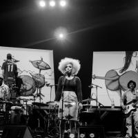 Tensão e discurso contundente marcam a estreia do novo show de Anelis Assumpção
