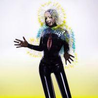 Vulnicura, o novo álbum da cantora islandesa Björk, liberado para download