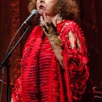 A última voz do Brasil, Cida Moreira canta um país que jamais se insinua simplório