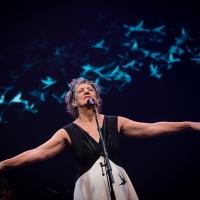 O tempo precioso de Ná Ozzetti celebrando 40 anos de palco